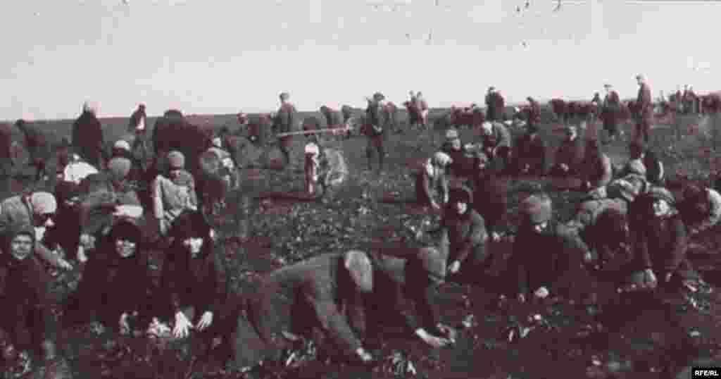 Holodomor: Famine In Ukraine, 1932-33 #17