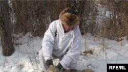 Охотник Юрий Хайгин с убитым волком. Алматинская область.