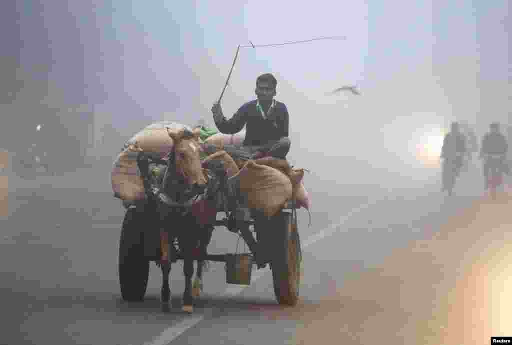 A man transports sacks of rice in a horse-drawn cart amid heavy fog in Allahabad, India. (Reuters/Jitendra Prakash)