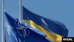Партнерство з НАТО є запорукою існування України як незалежної держави – експерти