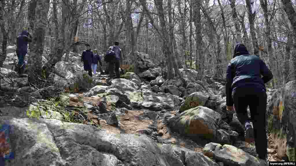 Щоб піднятися до однієї з визначних пам'яток – гори «Зубці» – потрібно підніматися по слизьких каменях через ліс