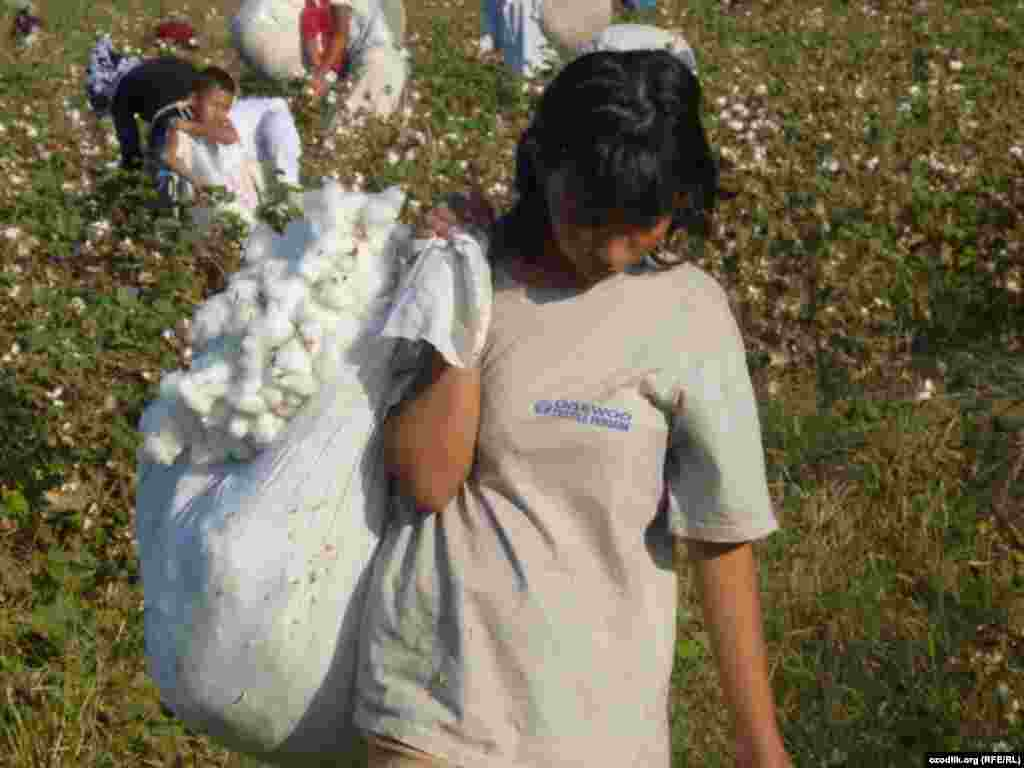 A girl carries a sack of cotton in Uzbekistan.