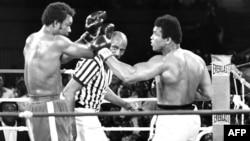 Мөхәммәт Али бокс рингында (уңда)