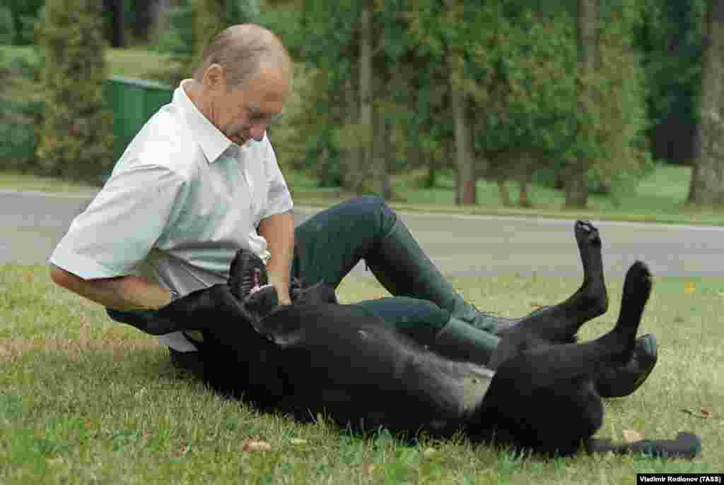 В резиденции Ново-Огарево с лабрадором Кони. Июль 2003 года.