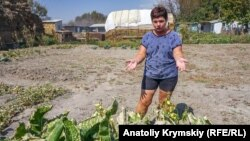 Хрен на огороде Марины Старченко тоже пострадал