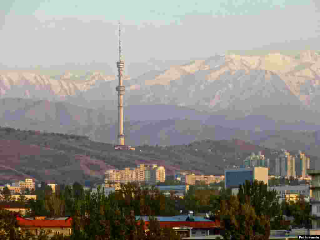 The official reason to relocate the capital from Almaty (pictured) was to avoid the earthquakes that rattle the town and to help spread wealth more evenly across the country. Many noted that Nazarbaev was also able to leave his political opposition behind as his government headed north to Astana.