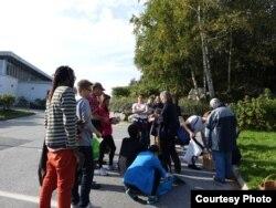 Интернациональный грибной поход, организованный норвежцами-энтузиастами. Сентябрь 2014 года