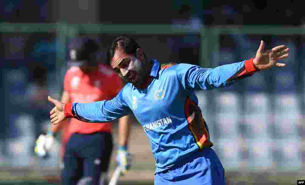 Afghanistan's Samiullah Shinwari celebrates the wicket of England's Jos Buttler at the Feroz Shah Kolta Cricket Stadium in New Delhi on March 23.