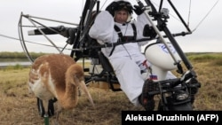 "Russian President Vladimir Putin prepares to take part in a scientific experiment as part of the ""Flight of Hope,"" which aims to preserve a rare species of cranes, in September 2012."