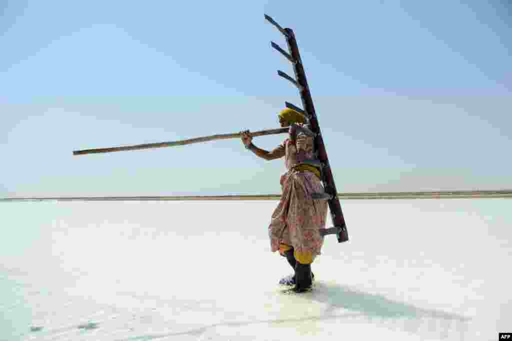 Salt worker Walbai Ayyubbhai, 70, carries a rake at a salt pan in the Santalpur region of India. (AFP/Sam Panthaky)