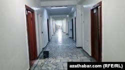 Hassahana koridory. Arhiwden alnan surat