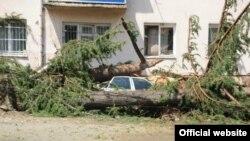 Поврежденные линии электропередач, рекламные баннеры и поваленные ветром деревья – такую картину можно было наблюдать сегодня в Восточной Грузии