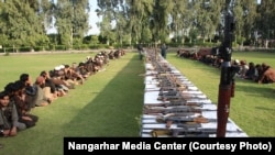Hundreds of IS fighters surrendered to the Afghan authorities in Nangarhar since mid-November.
