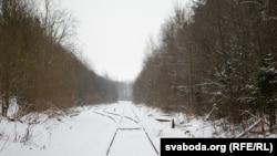 Захоронения обнаружили, когда прокладывали эту ветку железной дороги возле Орши