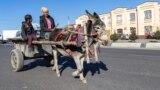 Повозка запряженная ишаком. Самарканд, Узбекистан, 29 ноября 2019 года.