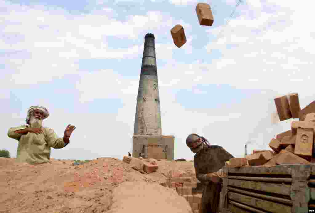 Afghan workers at a brick kiln pile up new bricks in the Shahrood district of Nangarhar on June 19. (epa/Ghulamullah Habibi)