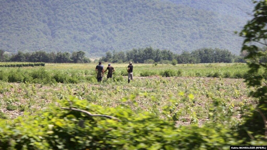 В Грузии на законодательном уровне запретят продажу земли иностранцам