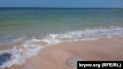 Нашествие медуз и иностранных депутатов