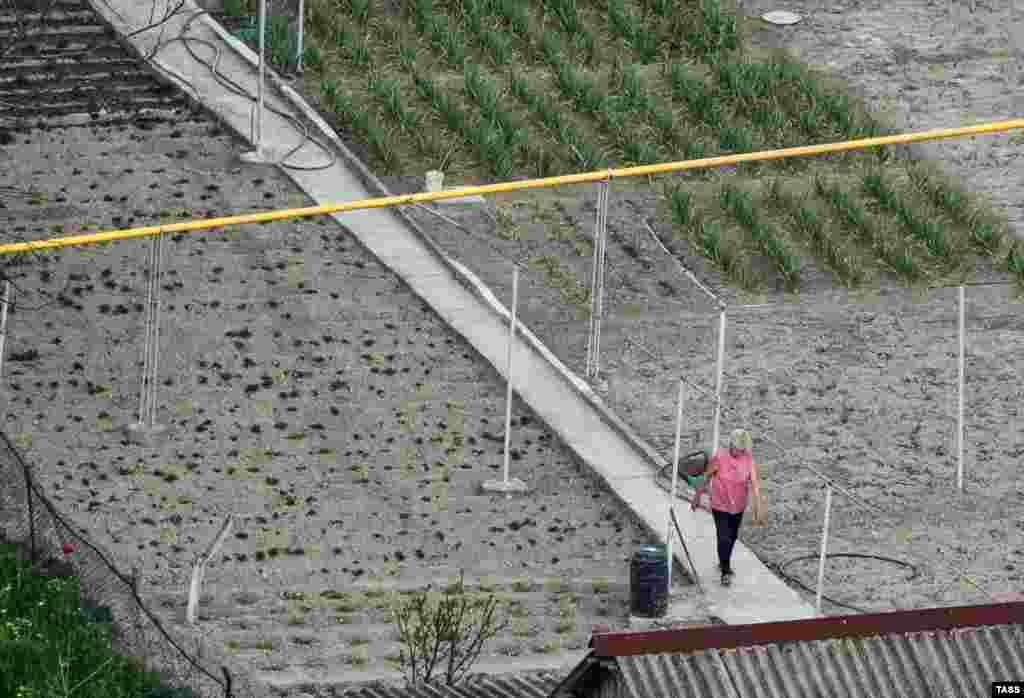 Тем временем дачники из села Красный Мак в Бахчисарайском районе вышли на посевные работы. Как прошла шестая неделя карантина в Крыму, смотрите в нашей фотогалерее