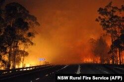 Лесной пожар в Австралии. Март 2014 года