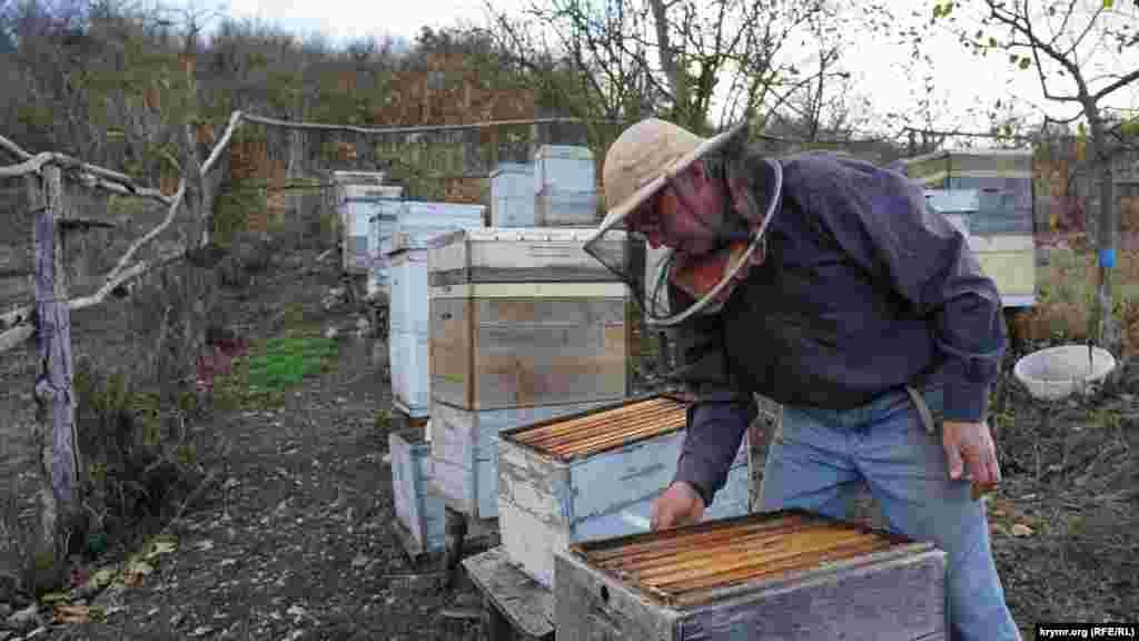 Самый молодой из нынешних жителей Пчелиного –Юрий Архипов. Он единственный, кто сейчас занимается пчеловодством в затерявшемся горном селе. Его хозяйство – это 15 ульев с карпатской и немецкой породами пчел