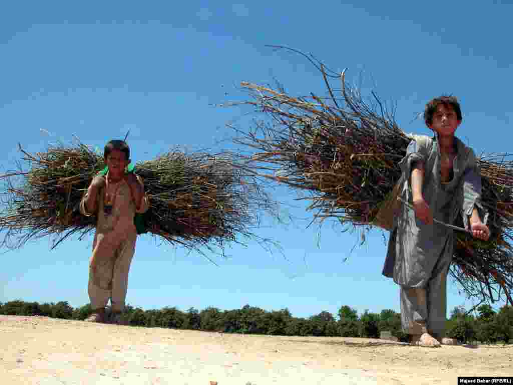 Children carry heavy loads in Peshawar, northwest Pakistan.