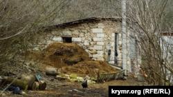 Помещения бывшего имения сейчас используют дачники в подсобном хозяйстве