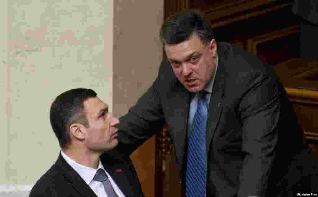 If there are going to be fisticuffs in parliament, it's wise to ensconce yourself next to a reigning world heavyweight boxing champion-cum-lawmaker. But Vitali Klitschko (left) sat this this one out entirely.
