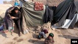بیجا شدههای افغان