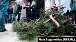 Представители движения «Партизанское садоводство» утверждают, что причиной приостановки процесса вырубки деревьев стали протестные акции жителей столицы, привлекшие внимание членов городского сакребуло