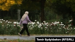 Kyrgyzstan - Autumn in Bishkek, weather, fall, rain, wind
