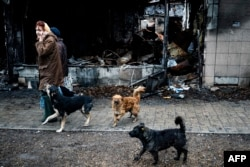 A pack of stray dogs follow women walking past a a burned-out shop in Donetsk. (file photo)