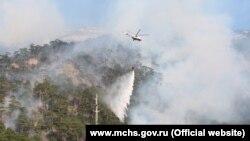 Лесной пожар в заповедной зоне, ущелье Уч-Кош