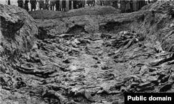 Массовые захоронения расстрелянных НКВД польских граждан в Катыни. Фото 1943 года