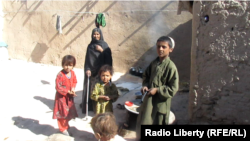 Displaced Afghans in Uruzgan Province