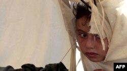 Маленька біженка з Сирії