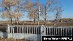 В селе Садовое когда-то была школа, но в конце 1990-х годов ее закрыли. Теперь дети вынуждены ездить в соседнее село. Зимой, когда дорогу заметает и транспорт не может проехать, школьники сидят дома по несколько дней, пропуская занятия.