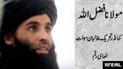 "Pakistanyň ""Talyban"" hereketiniň lideri Maulana Fazlullah."