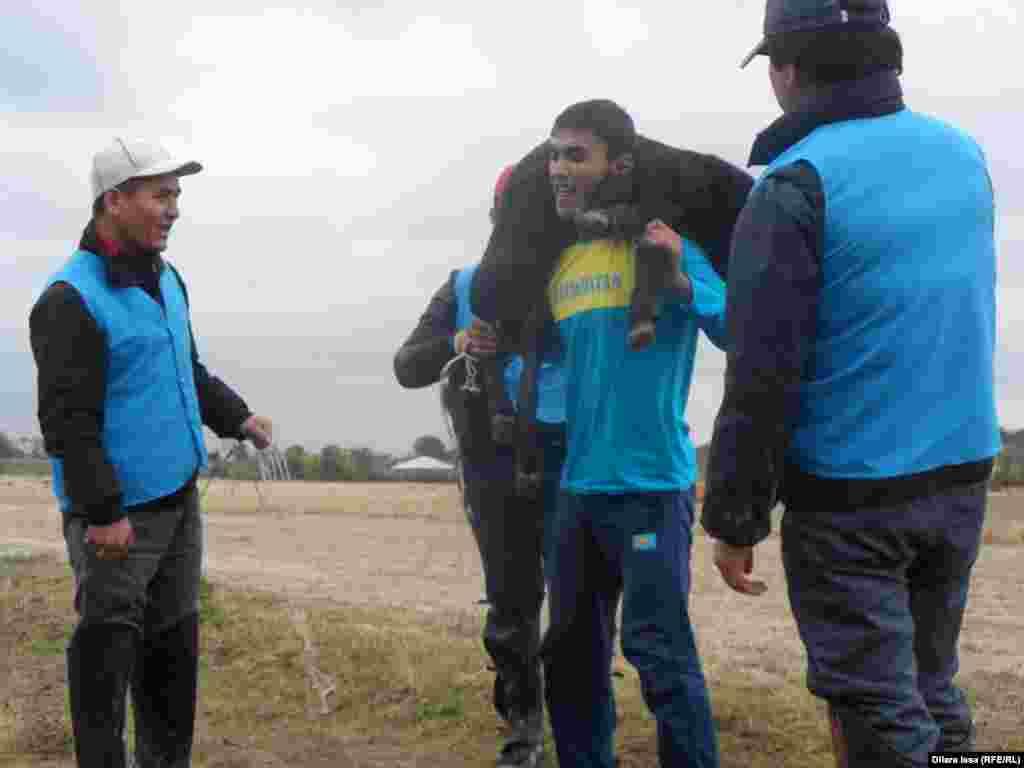 16 жастағы Мадияр Құрал (ортада) салмағы 40 келіге жуық қошқарды 70 рет көтеріп, жарыс жеңімпазы атанды. Шымкент, 17 қазан 2015 жыл.