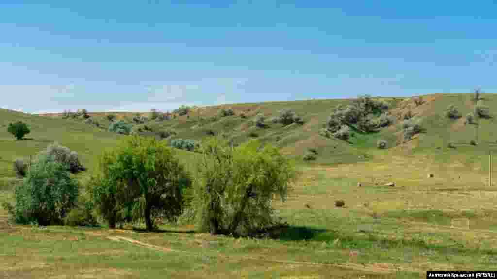 Долина річки Тобе-Чокрак. Туди стікає вода з накопичувачів насосної станції Міжгірського гідровузла