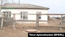 Жолқұдық ауылындағы Е.И. тұратын үйдің ауласы. Павлодар облысы, сәуір, 2016 жыл.