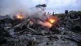 Одне з місць падіння уламків «Боїнга», збитого російською установкою «Бук», в результаті чого загинуло 298 людей, в тому числі 80 дітей. Донеччина, неподалік села Грабове, 17 липня 2014 року