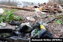 Обочина дороги в Новгородской области