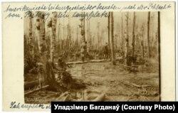 Амэрыканскія журналісты аглядаюць поле бітвы пад Паставамі, красавік 1916 году