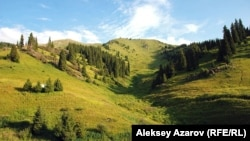Көкжайлау. Алматы маңы, 20 шілде 2012 жыл.