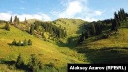 Көкжайлау қорығы. Алматы, 20 шілде 2012 жыл