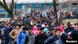 Fotografi e 16 shkurtit të këtij viti ku shihen migrantët në zonën kufitare ndërmjet Austrisë dhe Sllovenisë