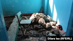 Халел Досмұхамбетов атындағы жалпы орта мектептегі жөндеу жұмысы кезінде жарылыс болған орын. Шымкент, 27 ақпан 2017 жыл