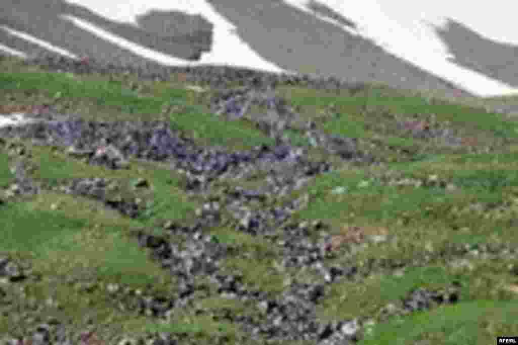 Саймалуу-Таш или расшитые камни Тянь-Шаня #5
