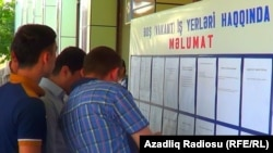 İmişli rayonunda əmək yarmarkası, 2013